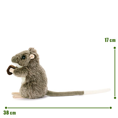 リアル 動物 生物 ぬいぐるみ ケナガネズミ サイズ