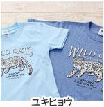 ミュージアムデザイン Tシャツ ユキヒョウ