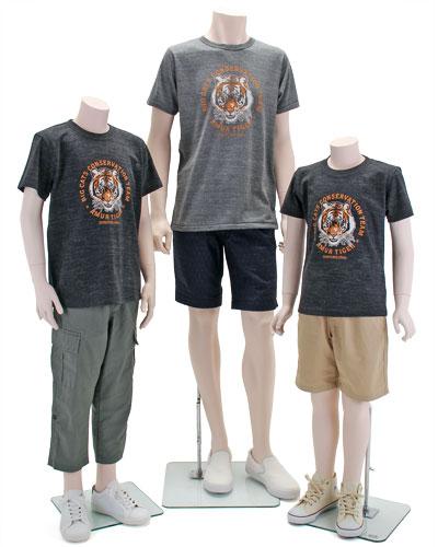 ミュージアムデザイン Tシャツ アムールトラ 着用イメージ