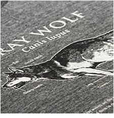 サイエンスデザイン Tシャツ タイリクオオカミ グレー