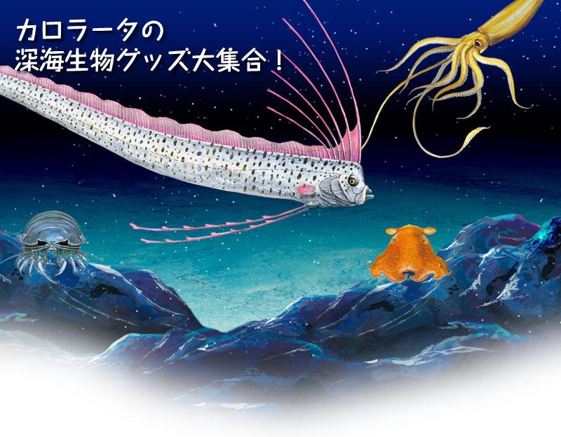 カロラータ 深海生物グッズ大集合
