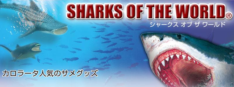 特集 サメ・シャーク