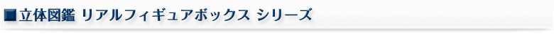 立体図鑑リアルフィギュアボックス シリーズ
