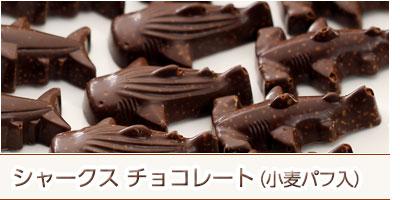 シャークスチョコレート 小麦パフ入