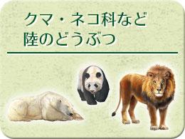クマ・ネコ科など陸のどうぶつ モチーフ