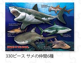 330ピース サメの仲間6種
