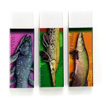 古代魚 消しゴム3個セット