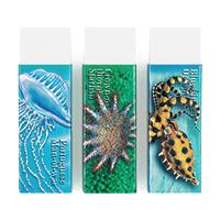 海の危険生物 消しゴム3個セット