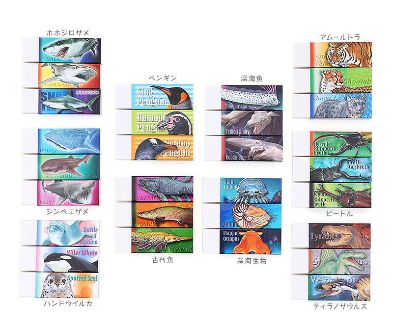 消しゴム3個セット〜ホホジロザメ、ジンベエザメ、ハンドウイルカ、深海魚、アムールトラ、ティラノサウルス、古代魚、深海生物、ビートル
