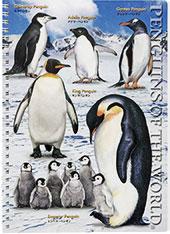 リングノート ペンギン