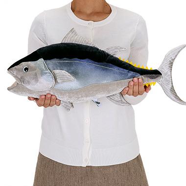 リアル 動物 生物 ぬいぐるみ クロマグロ 成魚 大きさ