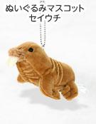 リアル動物 生物 ぬいぐるみマスコット セイウチ