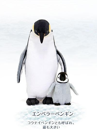 ぬいぐるみ リアルペンギンファミリー エンペラーペンギン