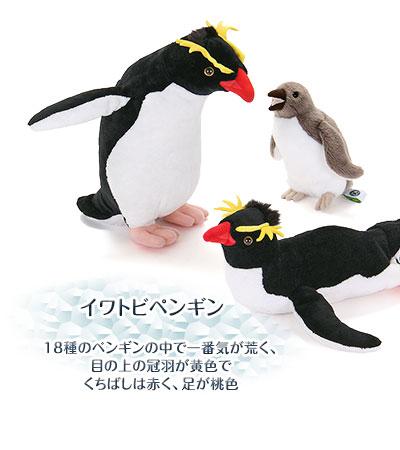 ぬいぐるみ リアルペンギンファミリー イワトビペンギン