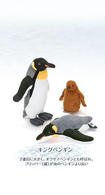 ぬいぐるみ リアルペンギンファミリー キングペンギン