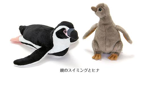 ぬいぐるみ フンボルトペンギン 親スイミングとヒナ