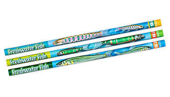 かきかた鉛筆3本セット2B 淡水魚
