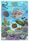 クリアケース A4 海の危険生物