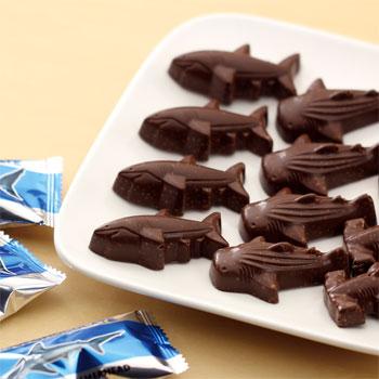 シャークス チョコレート